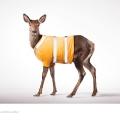 The-Deer-o